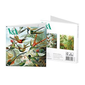 """Ernst Haeckel - Art Forms in Nature"" Notecards 8/8"