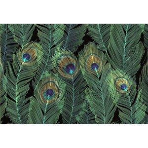 """Feathers"" Notecards (14/15)"