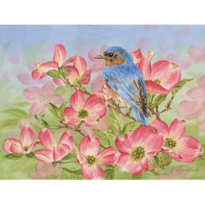 """Bluebird of Happiness"" Boxed Note Cards 13/13"