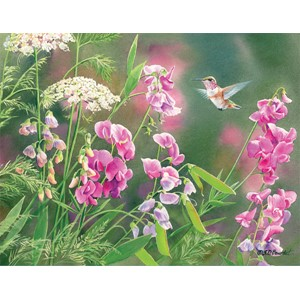 """Wild Sweet Pea"" Boxed Note Cards 13/13"